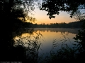 Auwaldsee