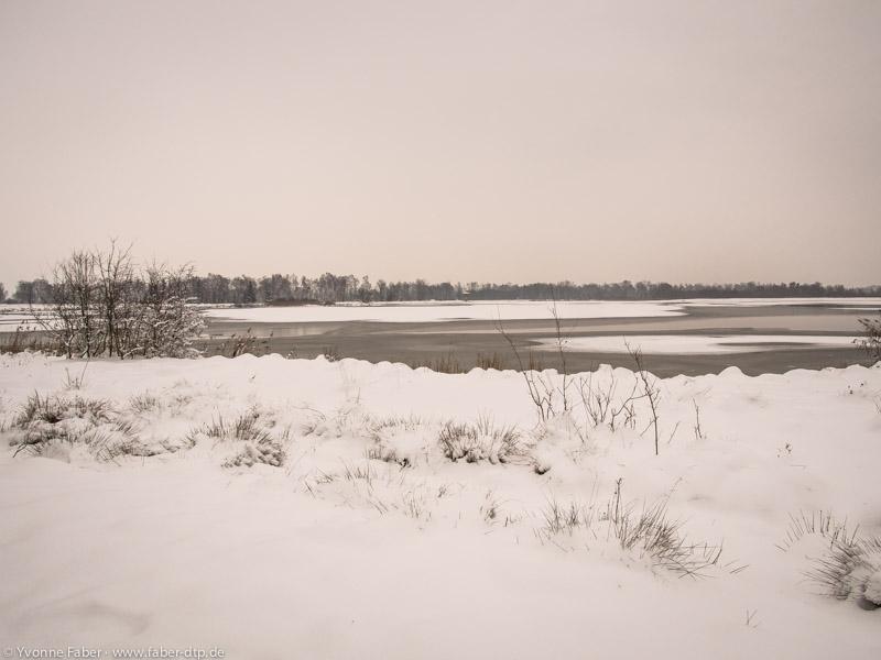 Mooswaldsee im Winter