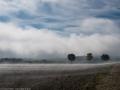 Nebel vor Albeck